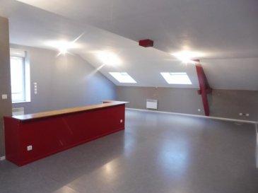 Bel appartement spacieux, de type F5 :   Entrée - Grand Séjour/Salon ouvert sur cuisine - 4 Chambres - Salle de bains - WC - Cave   Chauffage électrique