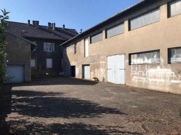 Au centre-ville, sur 15.38a de terrain, maison de ville et ses annexes de 598m² exploitables au total.<br />Rez de chaussée et 1er étage répartis en 2 appartements habitables (F5 de 173m² et F4 de 121m²) divisibles en 4 logements. Combles aménageables en F3 de 75m². Bâtiment de 229m² sur 1 étage divisible en 3 logements de type duplex de 70m² habitables.<br />Double Vitrage PVC, chauffage individuel GAZ.<br />NOMBREUSES POSSIBILITES D\'AMENAGEMENT !<br />Pour toutes informations complémentaires, n\'hésitez pas à nous contacter au 03.87.40.55.55