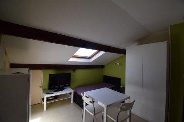 Studio en plein centre de BRIEY avec pie'ce principale, kitchenette et salle de bain. Le studio est vendu loué. Nbr de lots  : 21 Charges annuelles : 79 '