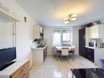 Visite virtuelle : https://premium.giraffe360.com/remax-partners-luxembourg/fbd50ea232cb4e2c946e5b12dcb030b0/  RE/MAX Partners, spécialiste de l'immobilier à Dudelange vous propose à la vente ce bel appartement actuellement loué, d'une superficie d'environ 30 m2 habitables. Situé au rez-de-chaussée, dans une rue calme du quartier italien, il se compose de la manière suivante :   Une pièce de vie avec une cuisine équipée ouvert, une chambre de plus de 12 m2, une salle de douches avec vasque simple et WC.  L'appartement est actuellement loué, 750€/mois Il est complété par une cave.  Caractéristiques supplémentaires : double vitrage, chauffage au gaz, situation calme, etcà  Passeport énergétique : I / I  La commission d'agence est inclus dans le prix de vente et supportée par le vendeur.  Contact : Sabrina ESCURE au +352 621 434 953 Ref agence : 5096406