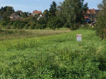 Beaux terrains à bâtir sur la commune de VOELLERDINGEN.  Secteur Sarre-Union-Diemeringen. Façade de 30m avec certificat d'urbanisme positif. Très bonne orientation. 2 terrains disponibles. Prix : 33.000 EUR FAC dont 10% d'honoraires charge acquéreur.