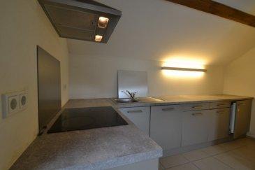 Joli appartement dans résidence récente au coeur de Dudelange comprenant une entrée, un séjour, une cuisine équipée ouverte, une chambe à coucher, une salle de bain, un balcon avec vue sur les toits et une cave privative.