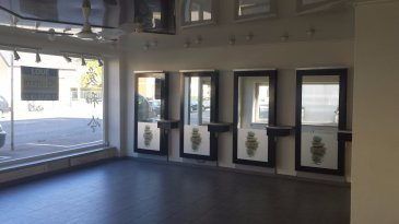 Local pro de 81 m² situé 7 avenue Comte de Berthier à Thionville  comprenant une pièce principale de 44 m² avec belles vitrines . Annexes et wc pour 37 m². Loyer de 590 € ht mensuel ( + taxe foncière de 1020 € annuel). Pas d'autres charges. Chauffage élec + climatisation. Parking gratuit. Convient à toute activité pro ou commerciale sauf alimentaire. Immodm 06 07 16 77 45