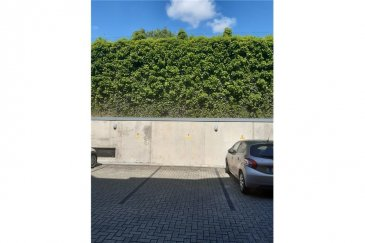 Veuillez contacter Franck Paul pour de plus amples informations : - T : 691 657 074 - E : franck.paul@remax.lu  RE/MAX, Spécialiste de l'immobilier à Wormeldange, vous propose un parking extérieur à louer. Ce parking est situé dans une résidence calme et à proximité de la frontière allemande. L'emplacement se situe à proximité d'une station de bus permettant de se rendre, assez rapidement, à Luxembourg ou à Esch-sur-Alzette. Une station service avec un supermarché est disponible à quelques dizaines de mètres. N'hésitez pas à me contacter pour de plus de renseignements.  Frais d'agence RE/MAX : 125 % du montant du loyer à la charge du locataire + TVA  _________ DEUTSCHE VERSION  Bitte kontaktieren Sie Franck Paul für weitere Informationen: - Telefon: 691 657 074 - Email: franck.paul@remax.lu  Parkplatz zu vermieten in Wormeldange  Der Immobilienspezialist RE/MAX bietet einen Außenparkplatz in Wormeldange zur Miete an. Dieser Parkplatz befindet sich in einer ruhigen Residenz bei der deutschen Grenze. Es befindet sich in der Nähe einer Bushaltestelle, um ziemlich schnell nach Luxemburg oder Esch zu gelangen. Eine Tankstelle mit Supermarkt befindet sich nur wenige zehn Meter entfernt. Zögern Sie nicht, mich für weitere Informationen zu kontaktieren.  RE/MAX-Vermittlungsgebühren: 125% der vom Mieter zu zahlenden Miete + MwSt