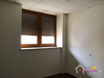 Appartement rénové de type F2 comprenant une pièce à vivre ouverte sur cuisine, une chambre, une salle d'eau et un toilette séparé.