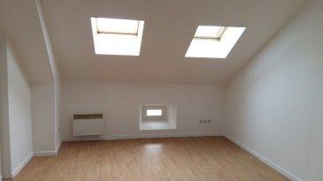 Appartement à Moyeuvre Grande dans petit bâtiment calme, comprenant cuisine ouverte sur séjour, une chambre, salle d'eau et WC séparés.