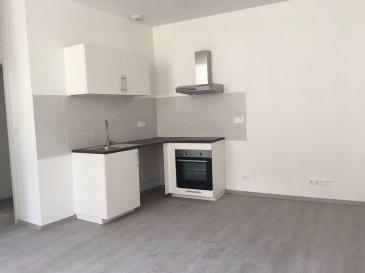 Appartement Metz-Centre-Ville
