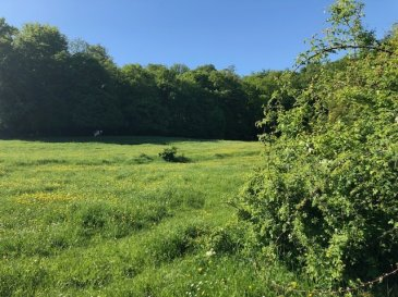 Terrain agricole d' environ 2 hectares Possibilité de construire sous certaines conditions  Honoraires charge vendeur