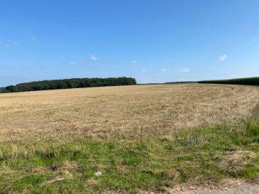 Jolie terrain labourable, sise dans la commune Biwer section F de Weydig, cadastre N'47/32 contenance 7ha70a32ca.