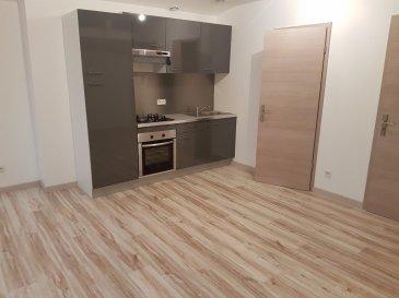 Appartement à Fourmies