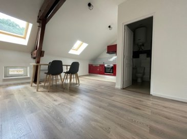 Appartement 2 pièces entièrement rénové, situé au 2e et dernier étage d'une maison de 3 appartements, comprenant : une cuisine équipée ouverte sur séjour / salon, (surface au sol : 32 m2 dont 25 m2 loi Carrez) une salle d'eau avec wc, une chambre, un cellier, une terrasse   Surface habitable: 41.12m² surface au sol 52.88 m²  Chauffage électrique  Parking gratuit à proximité  Loyer: 580 euros Charges: 30 euros Dépôt de garantie: 580 euros  Honoraires: 451 euros dont 123 euros d'état des lieux  Renseignements: 07 61 27 50 82 / 06 19 98 21 23  Cette annonce a été rédigée sous la responsabilité de Mme GUERY Pascale, agent  commercial mandataire de l'agence AS IMMOBILIER,  inscrite au R.S.A.C. de Thionville (57100) sous le numéro 497 893 982