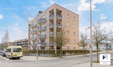 ***SOUS COMPROMIS***SOUS COMPROMIS***SOUS COMPROMIS***  Situé dans un quartier calme du Kirchberg et proche des institutions, à 5 min d'Auchan, KPMG, Crédit Suisse, EY, EIB, UBS, Deutsch Börse, BNP Paribas, Cour Européenne, Amazon, Max Plank Institut...  Cet agréable appartement, situé au Rez-de-Chaussée d'un immeuble de 5 étages, offre ± 91,16m² habitables et est agencé comme suit:  Une fois le sas d'entrée ±2m² passé, vous pénétrez dans le hall ±7m² avec son vestiaire et toilette d'invités ±2m² chacun, pour continuer vers le séjour ±32m², la cuisine équipée et aménagée ±12m² prolongée par la terrasse ±10m² - 2 chambres ±10 et 14m² et enfin la salle de douches ±5m² avec double lavabos, douche à l'italienne et wc.  Inclus dans l'offre, un double garage ±19m² no 018 situé au -1 et une cave ± 6m² (no146).  En plus, vous pourrez bénéficier du jardin commun, de la buanderie commune (1er emplacement sur la droite) et d'un local à vélos.  Charges : 360 € / mois  Détails complémentaires:  - Appartement en très bon état; - Salle de douche rénovée en 2012; - Immeuble construit en 1998 par la société Giorgetti; - Agréable environnement, verdure; - Proximité des grands axes routiers, centres commerciaux, cinéma, hôpital,    restaurants, business centers. Tram et bus à disposition.