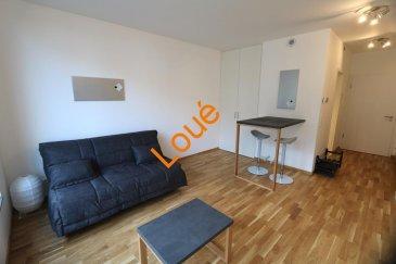 ***Loué***<br><br>L\'agence Property Invest vous propose en location:<br><br>un magnifique studio complètement meublé (nouvelle construction, première occupation)  avec tout le confort possible. Le studio dispose d\'une surface habitable de +/- 29m2 situé au 1er étage étage d\'une résidence à Luxembourg-Hollerich dans la route d\'Esch direction Cloche d\'Or, vous offrant :<br><br>un hall d\'entrée, une cuisine entièrement équipée ouverte sur la pièce à vivre et une salle de douche avec une grande douche italienne, un WC et un lavabo.<br><br>Dans la location sont compris: l\'abonnement internet/télévision, lave linge, sèche linge, drap de lit, aspirateur etc<br><br>Un emplacement de parking intérieur ainsi qu\'une cave privative complètent le bien.<br><br>L\'appartement se trouve à proximité des transports en commun et à quelques minutes du centre ville.<br><br>Disponibilité: de suite<br><br>N`hésitez pas à nous contacter pour des informations supplémentaires.<br><br>Cordialement<br><br>Property Invest Team<br> 671 888 777<br />Ref agence :6079286