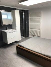 Très beau studio partiellement meublé sur 2 étages. libre le 10 avril 2019. Grande pièce à vivre avec cuisine équipée - chambre séparée avec sa salle de douche