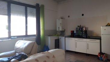 A vendre grand F2 centre ville RDC d'une surface de 48.55 m2 comprenant une grande pièce à vivre avec cuisine, séjour, une chambre, une salle de bains, actuellement loué 430 €