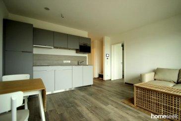 Au cœur de Gasperich dans une nouvelle construction, appartement meublé de 45m² avec vue sur le futur parc de Gasperich.<br>Il est composé comme suit :<br>- Hall d\'entrée<br>- Salle de douche avec WC<br>- Grande chambre avec accès balcon et coin dressing<br>- Salon/cuisine avec accès balcon<br>Au -1, une grande cave privative et au -2 un emplacement de parking intérieur (supplément de 150\'). A noter également : prestations de qualité, domotique (contrôle chauffage/volets électriques, lampes sur tablette), triple-vitrage, ventilation.<br>Proximité directe Deloitte, Lycée français et PWC. Tous commerces à proximité.<br>Libre au 1er janvier 2020.<br><br />Ref agence :4919791