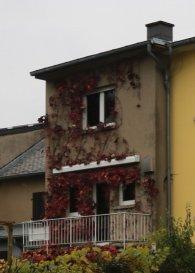 Contact : + 352 621 66 30 20  ou + 352 24 84 86 20<br><br>Remax spécialiste de l\'immobilier à Sandweiler vous propose à la vente :<br>Charmante maison de village sur 3 niveaux d\'environ 123m² de surface utile et environ 81m² de surface habitable.<br>Maison spacieuse et lumineuse idéalement située à Sandweiler.<br><br>Rez de Chaussée :<br>-Garage / entrée <br>-Buanderie avec accès jardin<br><br>Niveau 1 :<br>-Living d\'environ 20m²<br>-Cuisine d\'environ 15m² avec balcon donnant sur le jardin <br>         orienté sud/ouest<br><br>Niveau 2 :<br>-Salle de bain <br>-       WC séparé<br>-Chambre 1 ? 17.7m²<br>-Chambre 2 ? 13.3 m²<br><br>    Beau jardin clos et arboré, bien orienté, bénéficiant d\'un <br>    large ensoleillement.<br><br>Les honoraires d\'agence sont à la charge des vendeurs.<br><br>Photos - plans et visite virtuelle sur demande
