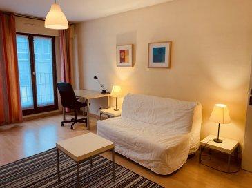 Studio meublé - 32m2 - Strasbourg Krutenau.  Idéalement situé au coeur du quartier de la Krutenau à Strasbourg, à quelques minutes des transports et du centre ville; nous proposons à la location un studio meublé d\'une surface de 31.46m2. Situé au 4ème étage de l\'immeuble avec ascenseur, il comprend: une entrée avec placards, une pièce principale avec cuisine ouverte (plaques, four, hotte, four et réfrigérateur) et une salle de douche avec WC. L\'appartement dispose également d\'une place de parking privative. Production d\'eau chaude individuelle électrique, chauffage collectif compris dans les charges. Disponible au 18/03/2021. <br> Surface Habitable: 31.46m2.<br> Loyer: 596EUR/mois charges comprises (dont 90EUR de provisions pour charges avec régularisation annuelle).<br> Dépôt de garantie: 506EUR.<br> Honoraires à la charge du locataire: 377.52EUR TTC (dont 94.38EUR TTC pour l\'état des lieux)
