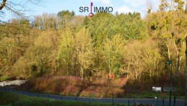 """Schönes Baugrundstück in Roth an der Our  Dieses ruhig gelegene Grundstück mit Hanglage eignet sich gut zum Bau eines schönen Einfamilienhauses oder Mehrfamilienhauses.   Lagebeschreibung:  Das Grundstück befindet sich im """"Delsbüscherweg"""" der Gemeinde Roth an der Our, im Herzen des deutsch-luxemburgischen Naturparks.  Die westliche Richtung bietet Ihnen einen herrlichen Ausblick ins Ourtal und auf die Gemeinde Bettel (Luxemburg). Die ruhige Wohnlage ist nur 3 km von Vianden, 10 km von Diekirch und 17 km von Ettelbrück entfernt. Anschluss an den öffentlichen Verkehr in Luxemburg besteht im ca. 1 km entfernten Bettel. Über die Anschlussstelle Ettelbrück-Schieren A7 (Autobahn) sind die Stadt und der Flughafen Luxemburg in 40 Minuten zu erreichen.   HAFTUNGSAUSSCHLUSS Die von uns gemachten Angaben hinsichtlich Größen und Beschaffenheit des Objektes beruhen auf Informationen des Verkäufers bzw. Dritter und sind unverbindlich. Eine Haftung jeglicher Art für die Richtigkeit und Vollständigkeit der Angaben wird daher ausgeschlossen. Unser Angebot erfolgt freibleibend, Zwischenverkauf vorbehalten.   VERBRAUCHERINFO 1. Maklerleistung ist der Nachweis der Gelegenheit zum Abschluss eines Vertrages bzw. Vermittlung eines Vertrages über eine Immobilie gegen die Maklerlohnzahlungspflicht des Kunden. Eine Maklerprovision in Höhe von 3,57 % incl. 19 % MwSt. ist vom Käufer zu zahlen. Die Maklerprovision ist fällig und verdient mit Unterzeichnung des Kaufvertrages. 2. Unternehmer, Anschrift, Beschwerdeadressat: ARCADIA Fine Properties S.A., 20, Grand-Rue, L-9410 Vianden, Tel.: 00352 266 344 1, Email: contact@sri.lu, Direktor: Ton Eggen 3. Es besteht ein Widerrufsrecht für Verbraucher  WIDERRUFSRECHT FÜR VERBRAUCHER Sie haben das Recht, binnen vierzehn Tagen ohne Angabe von Gründen diesen Vertrag zu widerrufen. Die Widerrufsfrist beträgt vierzehn Tage ab dem Tag des Vertragsabschlusses. Um Ihr Widerrufsrecht auszuüben, müssen Sie uns (ARCADIA Fine Properties S.A., 20, Grand-Rue, L-9410"""