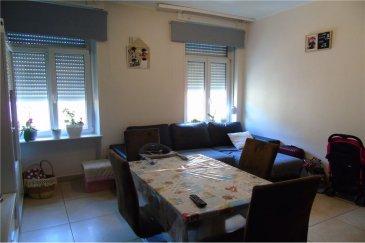Appartement à vendre à Esch/Alzette<br>RE/MAX spécialiste de l\'immobilier au Luxembourg vous propose à la vente en exclusivité un appartement deux chambres sis à Esch/Alzette, d\'une surface habitable d\'environ 53 m2. L\'appartement se trouve au premier étage d\'un immeuble des années 1920, composé de quatre logements.  Ce bien comporte:  - Hall d\'entrée,  - Cuisine équipée ouverte sur le salon, - Deux chambres sur parquet, - Salle de douche avec toilettes.  Fenêtres double vitrage et volets sont récents.   L\'appartement dispose aussi d\'une cave privative de 10 m2 avec électricité.  Disponibilité à convenir.  Commission + TVA à charge du vendeur <br>