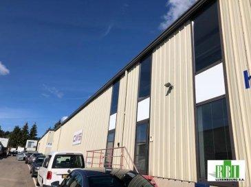Sandweiler, hall avec bureaux à louer d\'une surface totale de 597 m2,  dont 120 m2 de bureaux,ainsi que   dix emplacements de parking extérieurs.<br>Situé dans une  zone industrielle très facile d\'accès depuis l\'autoroute et avec bonne visibilité de la route.<br>Pour les visites veuillez  nous contacter au 34 65 20  ( de 8h30 à 16h00)ou 691 346 525<br>ON A UN MANDAT DE LOCATION EXCLUSIF , renseignements seulement par email<br />Ref agence :2449304