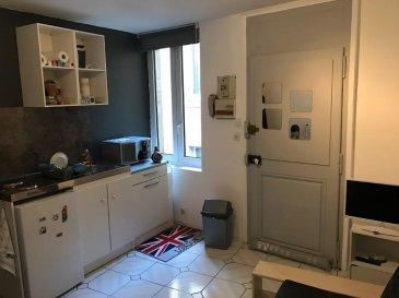 Studio 20 m² Centre ville - Ile du Saulcy. A 2 pas du Saulcy et proche de toutes commodités, venez découvrir ce joli studio de 20m².<br/>L\'appartement se compose d\'une pièce principale avec placard, d\'un coin cuisine aménagé, d\'une salle de bain et d\'un WC séparé. <br/>Libre Mars 2020