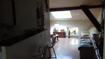 Dans petite copropriété, appartement en combles comprenant: cuisine ouverte sur séjour, 1 chambre, bureau, salle de bains et toilettes.