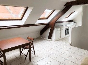 Appartement  1 chambre. Charmant appartement de 45 m2 situé au 3ème étage sous comble d'une petite résidence, comprenant:  - cuisine équipée - 1 chambre - Salle de douche - séjour - wc séparé