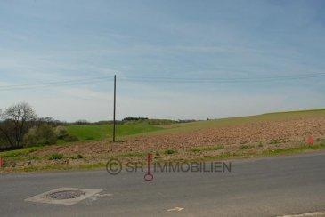 Voll erschlossenes Grundstück, in leichter Hanglage, ohne Bauvertrag für Einfamilienhaus mit Garage. Garten hinter dem zu bauenden Haus in sonniger Südwestlage. Vom Grundstück haben Sie einen herrlichen Blick auf die umliegenden Felder und Wälder.<br><br>Lagebeschreibung<br><br>Im kleinen, ruhigen Dorf Altscheid leben rund 100 Einwohner. Die Gemeinde besitzt eine Gesamtfläche von 5 km². Bitburg liegt ca. 12 km und Echternach ca. 32 km entfernt. Freizeitmöglichkeiten: Grillhütte, Radwandern, Spielplatz, Wandern, Dorfgemeinschaftshaus<br>Sehenswertes: Pfarrkirche mit Bauteilen aus dem 16.Jahrhundert, Stausee Biersdorf (4 km entfernt), alte Bauernhäuser, Naturlandschaft.<br />Ref agence :100138