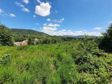 SAINT AME  AFFAIRE : Terrains à batir de 1000 m² à 1300 m² viabilisés et libre de constructions.  Belle vue et bonne exposition  A partir de 30 000 €