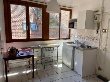 Studio meublé - 14.45m2 - Centre ville STRASBOURG.  Proche de toutes les commodités et dans l'hyper centre de Strasbourg, Studio meublé de 14.45m2 situé à proximité de la place de l'homme de fer. Il comprend : une pièce ouverte sur une kitchenette équipée (plaques de cuisson et un frigo) et une salle de bain avec douche, WC et lavabo. Loyer : 399EUR dont 37EUR de charges. Dépot de garantie : 362EUR TTC. Honoraires à la charge du locataire : 187.85EUR dont 43.35EUR pour l'etat des lieux. HEBDING IMMOBILIER 03 88 23 80 80