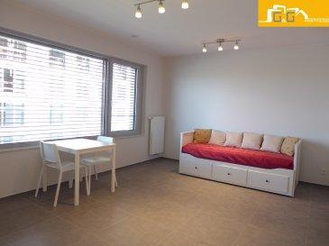---LOUE--- ---RENTED---   --- 1ère OCCUPATION ---  Très beau studio entièrement meublé situé au 1ière étage d'une nouvelle résidence de 2017 à Gasperich-Cloche d'Or.  Ce bien se compose de :   - 1 spacieux living/chambre  - 1 nouvelle cuisine équipée ouverte - 1 grande salle de bains avec WC - 1 buanderie commune avec lave-linge  - 1 cave privée de 4,59 m2 - 1 emplacement intérieur privé dans la résidence pour 200 € - Libre de suite  À proximité directe du centre ville et transports publics à 2 pas. Accès directe aux grands axes d'autoroutes, supermarchés et restaurants.  N'attendez plus, contactez-nous par mail sur info@gng.lu ou au 621 366 377.  Découvrez toutes nos offres sur www.gng.lu