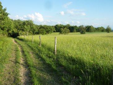 Landwirtschaftsfläche (18.23 Ar) und Waldfläche (1,10Ar), insgesamt 19,33 Ar.