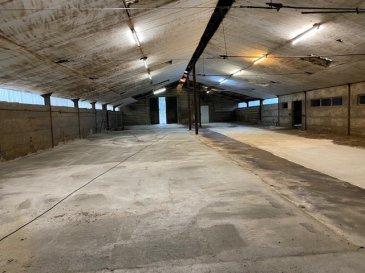 Hall de stockage, dimension 36mx14m =504m2 électricité et eau ,porte d'entrée 3mx3m.