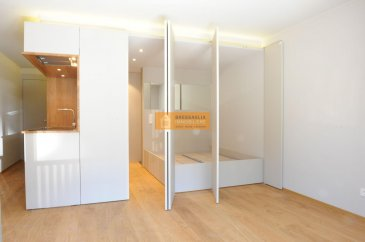 Beau studio meublé de 30 m2 situé au centre du Luxembourg. Le studio dispose de:  Hall d'entrée, cuisine équipée, chambre à coucher, salle de douche et balcon.  A voir absolument.  Le studio est situé en plein centre de la ville de Luxembourg dans le quartier du Grund. Ref agence :220