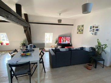 F2 50 m² Metz - Vallières. Au 2e étage d\'un immeuble au calme, venez découvrir ce bel F2 avec poutres apparentes de 50 m² avec vue sur les jardins. Il comprend un séjour avec coin cuisine aménagé, une chambre, une salle de douche et 1 WC séparé. Une place de parking complète le tout.<br/>Libre mi-Avril 2021