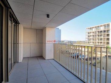 Bel appartement de haut standing, idéalement situé dans le nouveau quartier de la CLOCHE D\'OR à Luxembourg-Gasperich, dans une nouvelle résidence haut de gamme.<br><br>Description:<br>- L\'appartement de 76m2 plus deux loggias de 11,1m2 et 4,6m2,<br>- Au 2ème étage avec ascenseur, <br>- Un hall d\'entrée avec un WC séparé, <br>- Un séjour de 25.1m2 avec cuisine équipée, <br>- Deux chambres de 13m2 resp. 16.3m2,<br>- Une salle de bain avec WC, <br>- Une cave<br><br>Possibilité d\'acquérir un emplacement intérieur pour 50.000,-€<br /><br />Beautiful apartment with high standing, ideally located in the new CLOCHE D\'OR district in Luxembourg-Gasperich, in a new high-end residence.<br><br>Description:<br>- The apartment of 76m2 plus two loggias of 11.1m2 and 4.6m2,<br>- 2nd Floor with elevator,<br>- An entrance hall with a separate toilet,<br>- A 25.1m2 living room with fitted kitchen,<br>- Two bedrooms of 13m2 resp. 16.3m2,<br>- A bathroom with WC,<br>- A cave<br><br>An indoor parking space is available for 50,000, - €