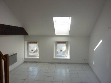 REMIREMONT COEUR DE VILLE  Un appartement sise au 3éme étage comprenant entrée, cuisine, séjour, sdb, wc, en duplex mezzanine, chambre, cave