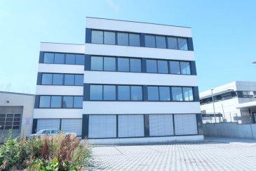 LUXEMBOURG CLOCHE D'OR, Immeuble à bureaux à 4 étages neuf à louer situé à la rue Eugène Ruppert, de 800  m2 habitable desservi par deux ascenseurs. Il est composé comme suit: 2ème étage bureaux open space à cloisonner,  toilettes, local technique,  Sous sol: plusieurs places de parking à louer au prix de 200 euros  Les surfaces sont divisibles et peuvent être cloisonnées,  L'immeuble est équipée de : triples vitrages, façade isolante, air conditionné, fenêtres closes, faux plafonds, deux ascenseurs,   Les plateaux peuvent êtres loués séparément ou en totalité  Prix hors charges sans parkings : 19.000 euros