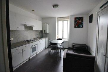 VILLERUPT.  Appartement situé à VILLERUPT Centre.<br> Bel appartement rénové de type F2 entièrement meublé situé au 1étage d\'une résidence de 6 appartements.<br> Il se compose d\'une entrée, une cuisine équipée ouverte sur un séjour, une chambre, une salle de bains avec WC.<br> Proche de toutes commodités et des transports en commun vers le Luxembourg.<br> Disponible en octobre.