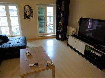 charmant appartement 2 pièces.  comprenant une entrée, cuisine équipée ouverte sur pièce de vie, une chambre, salle d'eau, et wc séparé. Une cave et un garage.
