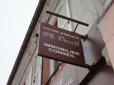 Epinal secteur Gare - Appartement f3 rénové 1er étage  - comp. Cuisine équipée - Vaste Séjour -  Deux chambres + placards - sde - Grenier aménagé - Cave et Jardin privatif -<br />Petite copropriété - Faibles charges<br />VISITE VIRTUELLE SUR SITE DE L\'AGENCE <br />Pour plus de renseignements contactez votre agent commercial Olivier Badonnel  06 62 34 52 31 immatriculé à Epinal sous le numéro 423816198 -