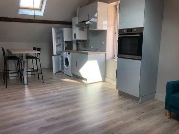Appartement rénové et meublé, comprenant cuisine ouverte sur séjour, 2 chambres, salle d'eau avec WC et cave. Chauffage ind. gaz