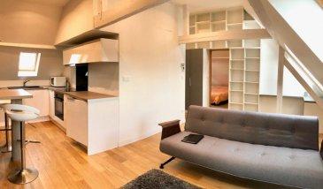 Schiltigheim - rue des Malteries (5 minutes de Strasbourg par la place de Haguenau) Au 3e étage d\'un petit immeuble ancien, superbe appartement 2 pièces meublé, très récent. Entrée, séjour avec rangements, cuisine ouverte équipée, salle de douche avec wc, chambre avec rangement. 33,75 m2 habitables - 53,72 m2 au sol
