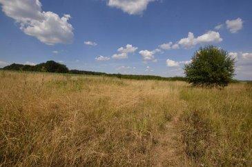 Immolino vous propose ce beau  terrain de 21.68 ares,terrain de spéculation, sis à Goetzingen,en pleine  verdure, sans aucun vis-à-vis, vue imprenable, ensoleillé,  très calme.  *** Sans Contrat de construction*** Goetzingen, sis dans la  Commune de Koerich à quelques kms de Capellen, Mamer, MAMER LYCEE, Strassen. Ref agence :446