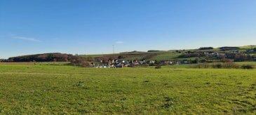 Grand terrain de 10 ares avec vue sur le campagne a vendre, terrain plat. Ce terrain est pour construire une maison des 3 maisons en bande.