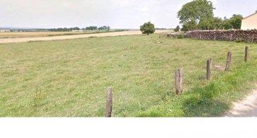Terrain à bâtir .  Entre Commercy et Pont A Mousson terrain à batir non viabilisé. Surface 2464 m2 avec environ 40 ML de facade à voir rapidement ...
