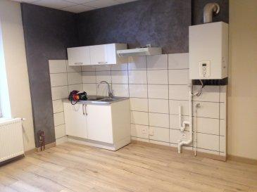 Appartement complètement rénové situé au rez-de-chaussé comprenant une cuisine aménagée, une chambre avec placard, une salle d'eau avec WC. Chauffage individuel gaz.