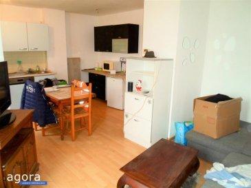 NOUVEAUTE EN EXCLUSIVITE AGORA !!!<br /><br />Laissez-vous séduire par ce bel appartement de 40m² en plein c'ur de Mancieulles.<br /><br />Visite virtuelle en 360° disponible (nous consulter ou rdv sur notre page Agora) : https://app.immoviewer.com/portal/tour/2083918<br /><br />Ce bien au 1er étage possède une entrée avec placard, une cuisine équipée ouverte sur salon, une chambre, une salle de bain, des WC séparés et une buanderie.<br />Il possède également une remise, une cave et un grenier. <br />Lumineux, isolé et sans travaux...L\'appartement sera rafraîchit pour la vente.<br /><br />Petit village calme, proche de toutes commodités de la vie et non loin de Briey.<br /><br />Très belle occasion à saisir pour un investisseur avec un loyer possible de 450 euros/mois. Vendu libre.<br /><br />Impôts foncier : env 250 euros<br />Charges de copropriété: env 300 euros par an.<br />Syndic bénévole.<br />Pas de litiges en cours.<br />Copropriété de 26 lots dont 5 principaux.<br /><br />Honoraires à la charge du vendeur.<br />ISTACE NELLY 06.01.97.17.33<br />Agora Briey : 03.82.20.25.26