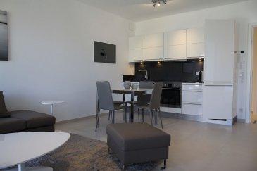 Nous avons le plaisir de vous proposer à la location un bel appartement tout compris (internet, télévision, femme de ménage, draps de bain et de lits...) dans le quartier de Kirchberg.<br><br>Le plus grand atout de ce logement de haut standing est qu\'il est entièrement meublé et équipé. <br><br>Il se compose comme suit:<br>- Cuisine équipée ouverte sur living et salle à manger;<br>- 1 chambre;<br>- Salle de bain;<br>- Balcon d\'environ 7m2; <br>- Buanderie équipée (lave linge/sèche linge);<br>- Garage et cave en option.<br><br>Prix locations:<br>1 mois: 2.600EUR<br>2/6 mois: 2.500EUR<br>> 7 mois: 2.400EUR<br>Parking: 150EUR<br><br>Frais d\'agence à la charge du locataire: 1 mois de loyer + 17% TVA. <br><br>Pour plus de renseignements veuillez contacter l\'agence.<br /><br />Wir haben das Vergnügen, Ihnen eine schöne Wohnung zu vermieten, mit einer Fläche von ca. 43m2, möbliert und komplett ausgestattet, es besteht wie folgt:<br><br>- Offene Küche mit Wohnzimmer und Esszimmer;<br>- 1 Zimmer;<br>- Badezimmer;<br>- Balkon von ca. 7m2; <br>- Ausgestatteter Waschraum (Waschmaschine/Wäschetrockner)<br>- Garage und Keller.<br><br>Einschließlich Nebenkosten (Reinigungsservice, Strom, WLAN, Fernseher usw.)<br><br>Agenturkosten zu Lasten des Mieterteils: 1 Monat Miete + 17% MwSt. <br><br>Für weitere Informationen wenden Sie sich bitte an die Agentur.<br><br /><br />We are pleased to offer you for rent a beautiful all-inclusive apartment (internet, television, maid, shower towels, bed sheets), in the Kirchberg district.<br><br>The major asset of this high standing flat is that it is entirely furnished and equipped. <br><br>It consists of:<br>- Equipped kitchen open to living and dining room;<br>- 1 bedroom;<br>- Bathroom;<br>- Balcony of about 7m2; <br>- Equipped laundry (washing machine/dryer);<br>- Garage and cellar optional.<br><br>Rental prices:<br>1 month: 2.600EUR<br>2/6 months: 2.500EUR<br>> 7 months: 2.400EUR<br>Parking: 150EUR<br><br>Agency fees at the expense of the